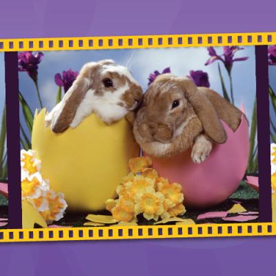 Easter Photos 2018